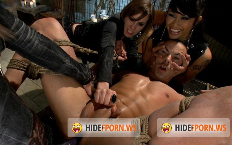 Kink.com / DivineBitches.com - DragonLily, Bobbi Starr, Maitresse Madeline and Nikko Alexander - A Man With Three Balls Means One For Each Domme! [HD 720p]