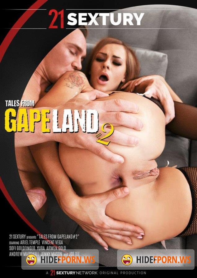Tales From Gapeland 2 [2017/DVDRip]